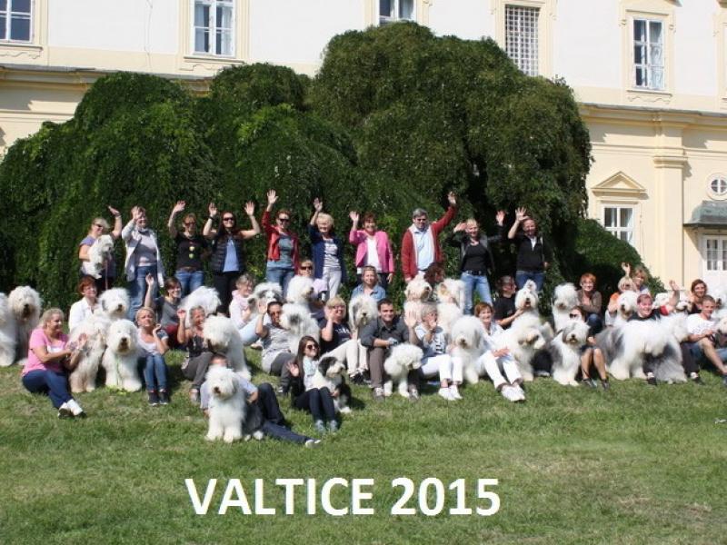 2015-valticeC7AE89A1-D90E-F910-7E9A-C0C99F08E20C.jpg