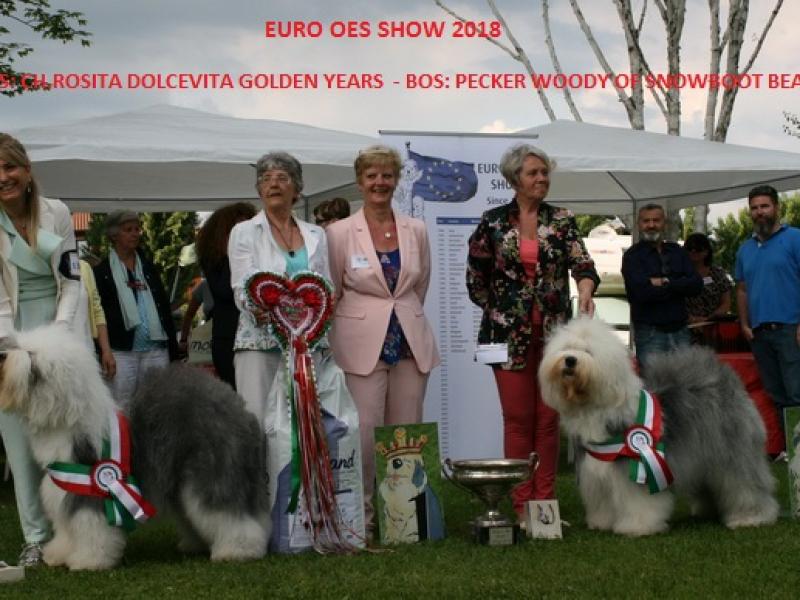 2018euro-1DD9753D7-4ADF-2011-2B7B-D0EE82BF33E8.jpg