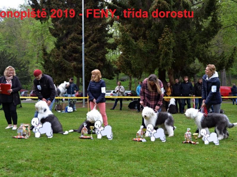 2019-konopiste64EB50FE2-F0E2-3CEF-E16D-A46C9AF8A8A3.jpg